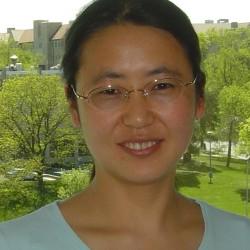 Xiaoxue Fan, PhD